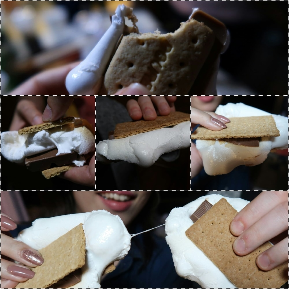 We Made S'more!