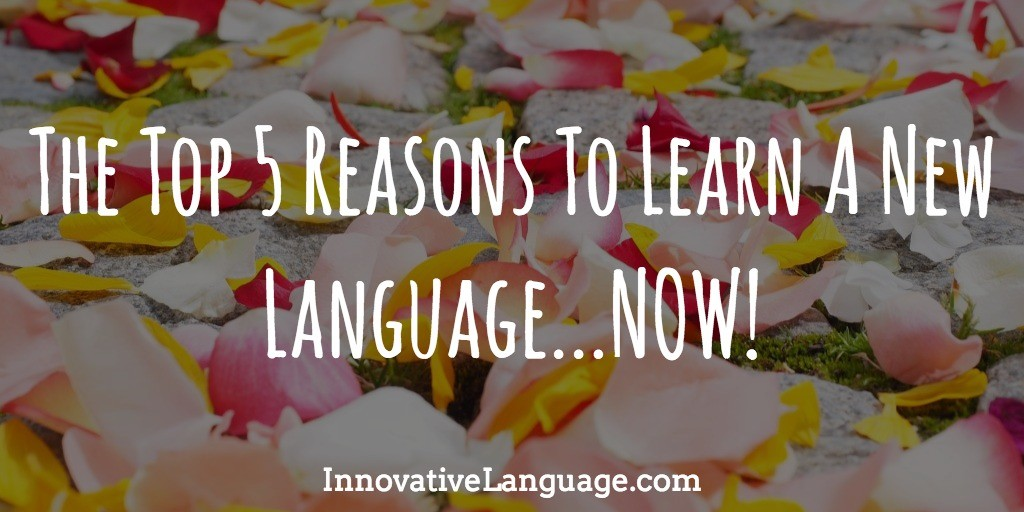Click Here To Learn A Language NOW!