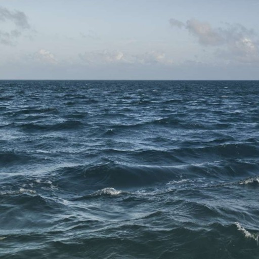 Hungarian word of the day ocean noun for Another word for ocean floor